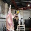 A la DIAN le preocupa el contrabando de ganado en Cúcuta