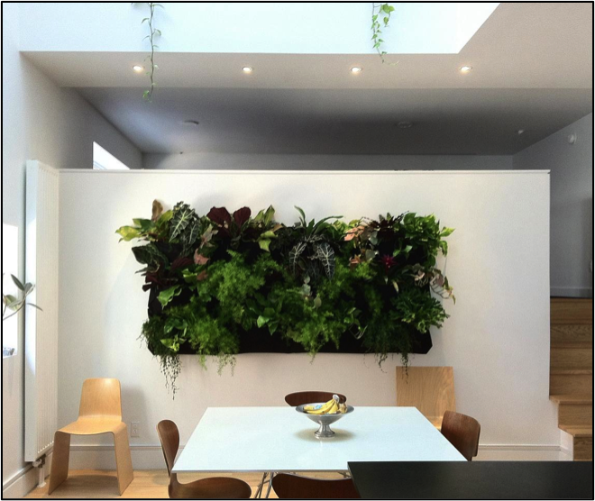 Jardines verticales una opci n atractiva y ecol gica for Jardin vertical interior