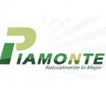 Piamonte S.A.