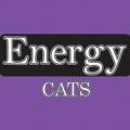 Concentrado para Gatos Energy Cats